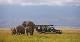 2-Day Amboseli Safari