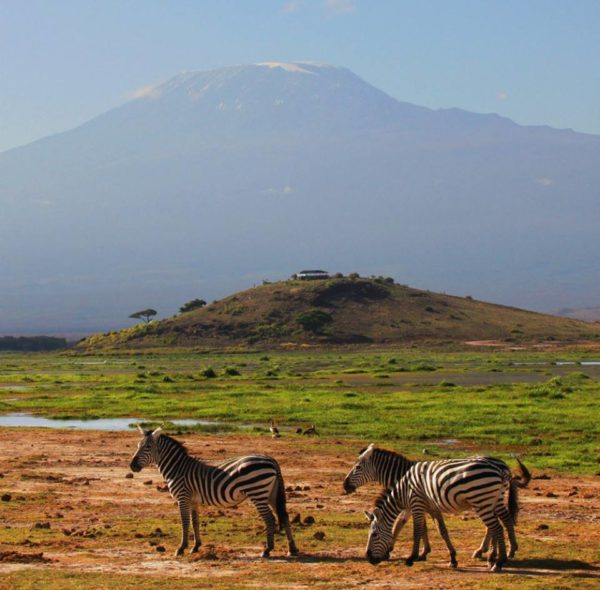 4-Day Amboseli Safari