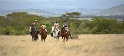 3-Day Aberdare National Park & Solio Conservancy Safari