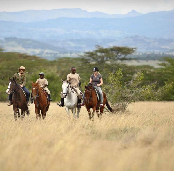3-Day Aberdare National Park & Solio Conservancy Safari