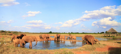 2-Day Mombasa to Tsavo East Overnight Safari