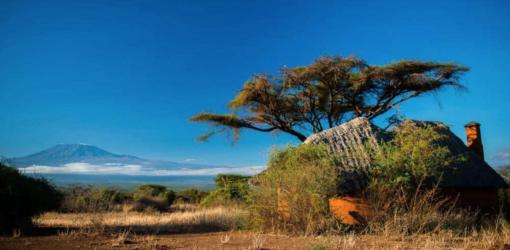 3-Day Amboseli Safari Kenya