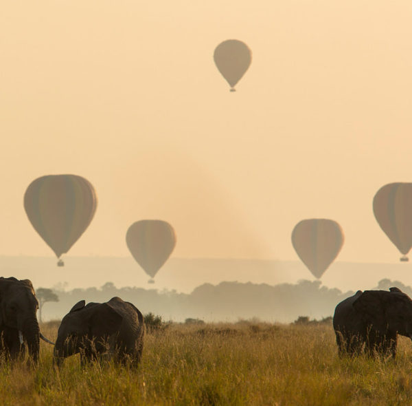Hot Air Balloon Ride Over Maasai Mara