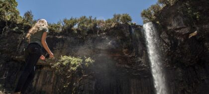 Full Day Aberdares National Park Tour