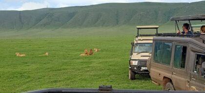 Arusha-Lake Manyara-Ngorongoro Tour
