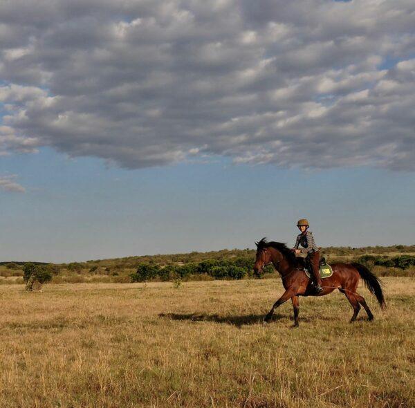 Horse Back Riding Safari in Maasai Mara